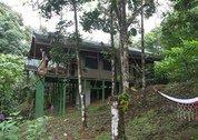 foto Rio Tico Safari Lodge