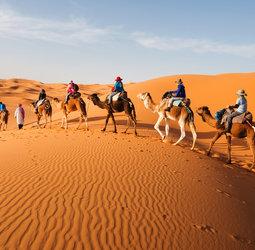thumbnail Familiereis Marokko Zomer