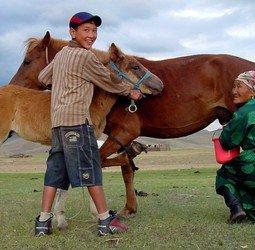 thumbnail Familiereis Mongoli�
