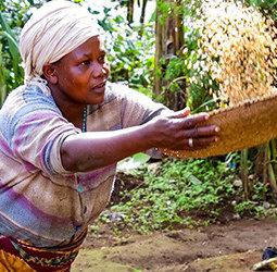 thumbnail Groepsrondreis Zambia, Malawi en Tanzania