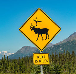 thumbnail Groepsrondreis Alaska en Yukon - Kampeer/hotel reis