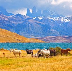 thumbnail Rondreis Patagoni�
