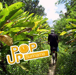 thumbnail Rondreis Suriname Pop-Up
