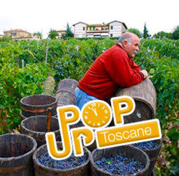 thumbnail Rondreis Itali� Toscane Pop-Up