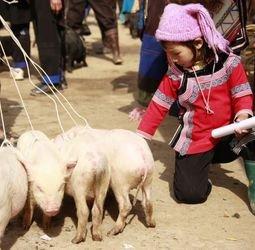 thumbnail Wandelvakantie Yunnan, China