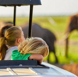 thumbnail Familiereis Namibi� Selfdrive