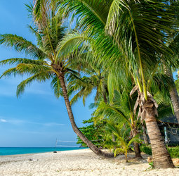 thumbnail Rondreis Thailand