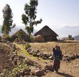 thumbnail Rondreis met Dragoman door Zuid-Ethiopi�