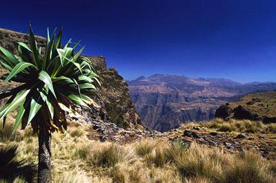 Sfeerimpressie Ethiopië: bijzonder kleurrijke volken
