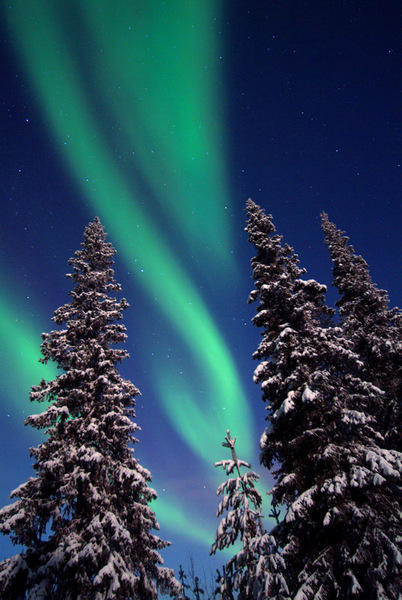 Sfeerimpressie Lapland Winter: Avontuur in de sneeuw
