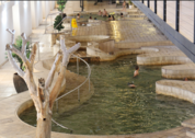 foto Ai-Ais Hot Springs Spa