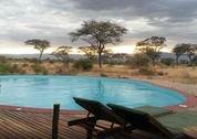 foto Tarangire Simba Lodge
