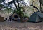 foto Krugerpark campsite
