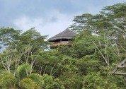 foto Samboja Lodge