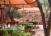 foto Waterberg Lodge