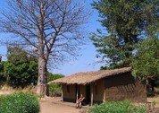 foto Njobvu Cultural Village Lodge