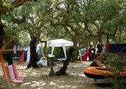 foto Camping U Stabbiacciu