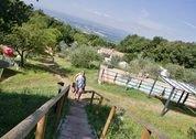 foto Camping Il Falcone