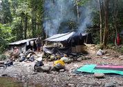 foto Junglecamp tijdens optionele trekking