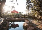 foto Matingwe Lodge