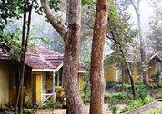 foto Wild Chalet Resort