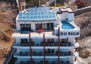 foto Blue Marlin