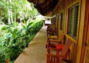 foto Jungle Lodge