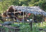 foto Orinoco Eco Lodge