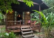 foto Our Jungle House