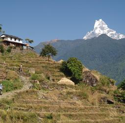 Reizen Nepal