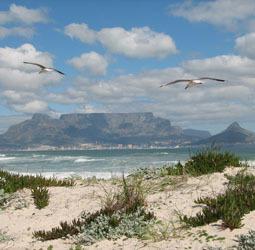 thumbnail Rondreis Zuid-Afrika en Swaziland