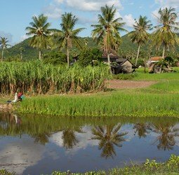 Sawadee: Rondreis VIETNAM EN CAMBODJA - 21 dagen</a><br>Over Mekong naar Angkor