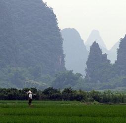thumbnail Familiereis China