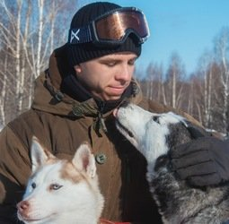 Rusland, winter, husky