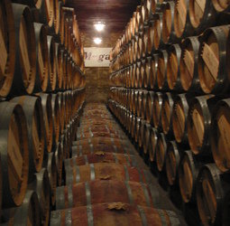 Fietsvakantie Spanje - La Rioja en Burgos