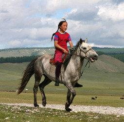 Rondreis Mongoli�
