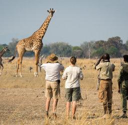 Sawadee: Groepsreis Van Vic Falls naar Zanzibar</a><br>Natuurpracht in onbekend Afrika