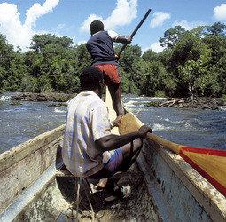 Online bestellen: Rondreis Avontuurlijk Suriname