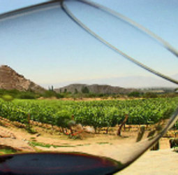 Fietsvakantie Spanje - Ruta del Vino (hotel)