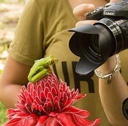 Sawadee: Rondreis COSTA RICA - 21 dagen</a><br>'El Dorado' voor natuurliefhebbers