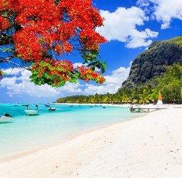 Groepsrondreis Madagascar/Mauritius Hoogtepunten