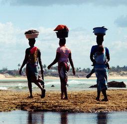 Groepsrondreis Zuid Afrika Mozambique
