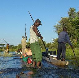 Groepsrondreis Zuidelijk Afrika Hoogtepunten