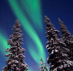 Rondreis Lapland Winter