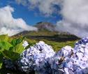 Pico Mountain, Pico