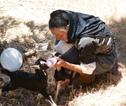 Fietsvakantie Karpathos geiten voeren