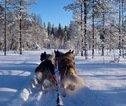 Rondreis Lapland