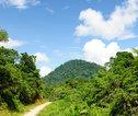 Rondreis Kalimantan