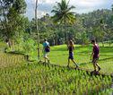 Familiereis Kleine Sunda Eilanden