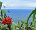 Rondreis Azoren